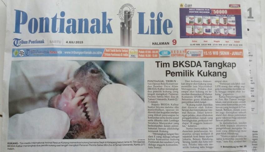 Tim BKSDA Kalimantan Barat Tangkap Pemilik Kukang