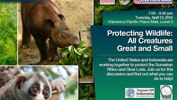 Presentation Protecting Wildlife : All Creatures Great and Small