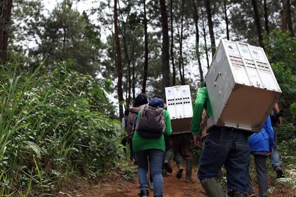 Perjalanan menuju lokasi pelepasan kukang di Gunung Sawal. Foto: IAR Indonesia