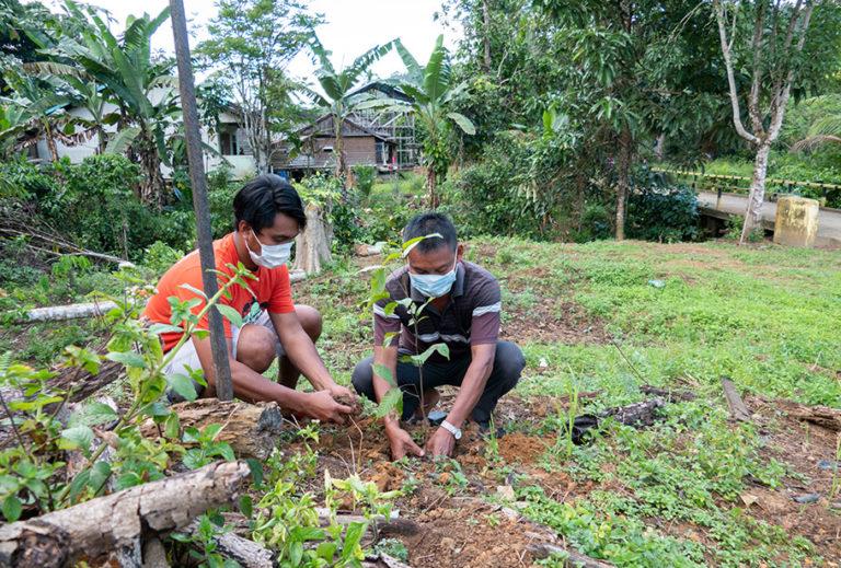 Damaskus Aman ikut peran juga dalam kegiatan menanam pohon di lokasi Kantor Desa pada hari kamis 12 November 2020.