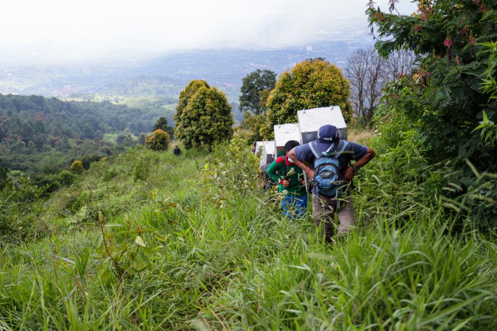 Tim pengantar yang teridiri dari BKSDA, Balai TNGHS dan warga lokal membawa kukang menuju area habituasi di kawasan TNGHS.
